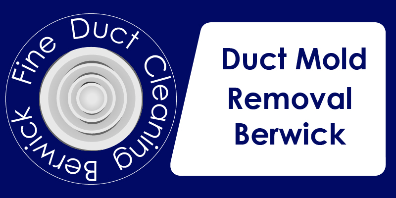 duct mold removal service berwick