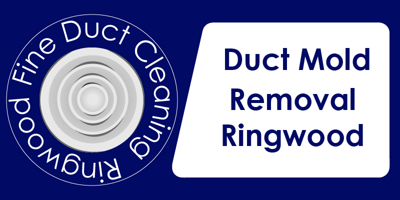 duct mold removal service ringwood