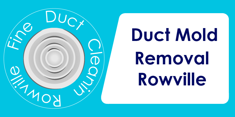 duct mold removal company rowville
